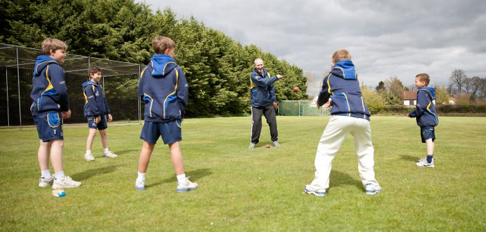 Free cricket resources for schools