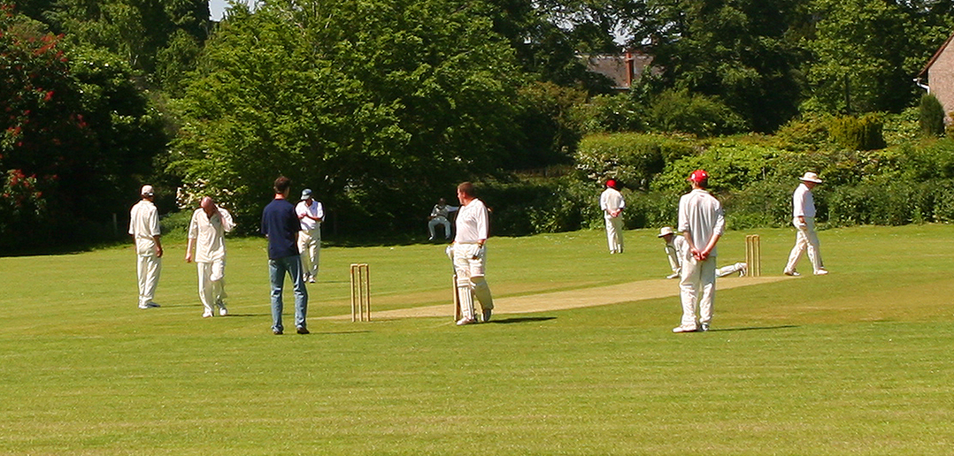 Local Cricket Club